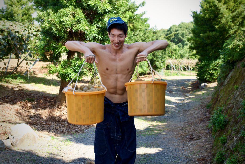 【キウイで筋トレ】アップライトロー(三角筋のトレーニング)@農家 フリー素材