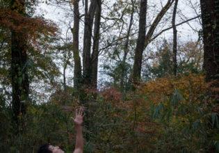 猫にも捨てられ天に助けを乞うマッチョ(縦写真)/reference stock photo muscle in autumn colors/box macho@フリー素材 マッチョ