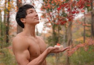 色付や 豆腐に落ちて 薄紅葉 (松尾芭蕉)/reference stock photo muscle in autumn colors@モデル 筋肉