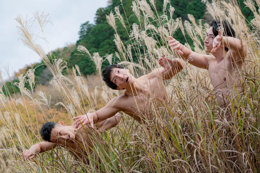 ススキにマッチョが現れた…/reference stock photo muscle in autumn colors@フリー素材 秋