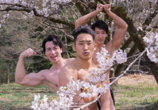 桜の精霊マッチョ@モデル 筋肉