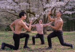桜をそれぞれに愛でるマッチョ@フリー素材 桜