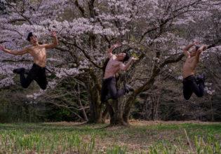 桜とともに舞い散るマッチョ@フリー素材 筋肉