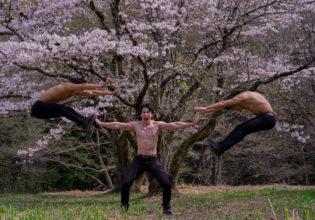 花を散らせるマッチョ/reference stock photo muscle cherry blossoms@モデル 筋肉