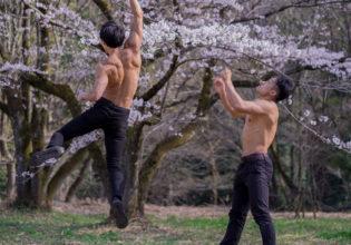 咲桜拳をキメるマッチョ/reference stock photo muscle street fighter cherry blossoms@モデル 筋肉