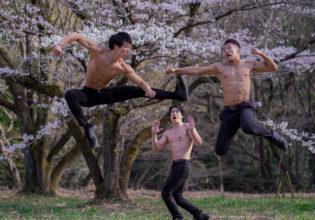 桜の下で闘うマッチョ/reference stock photo muscle street fighter cherry blossoms@モデル 筋肉