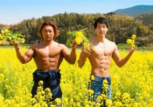 菜の花とマッチョ/reference stock photo muscle field of canola flower@フリー素材 筋肉
