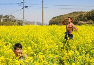 菜の花畑でかくれんぼするマッチョ/reference stock photo muscle field of canola flower@フリー素材 筋肉