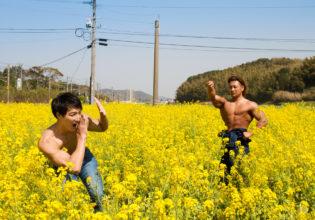 菜の花畑でかくれんぼするマッチョ@フリー素材 筋肉