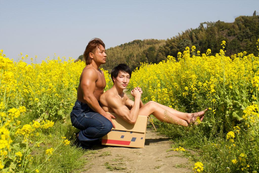 菜の花の覇権争いに敗れ捨てられるマッチョ/reference stock photo muscle field of canola flower box macho@フリー素材 筋肉