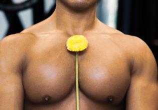 タンポポと大胸筋/reference stock photo muscle pecs and flower@アスリートモデル マッチョ