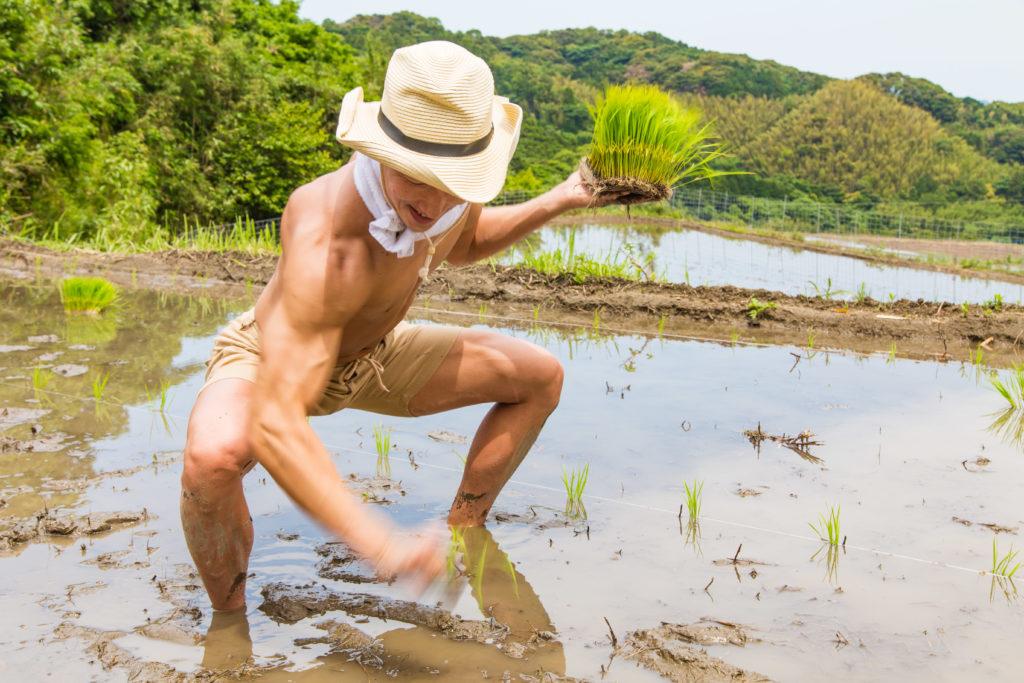 高速で田植えするマッチョ@著作権フリー 画像 筋肉