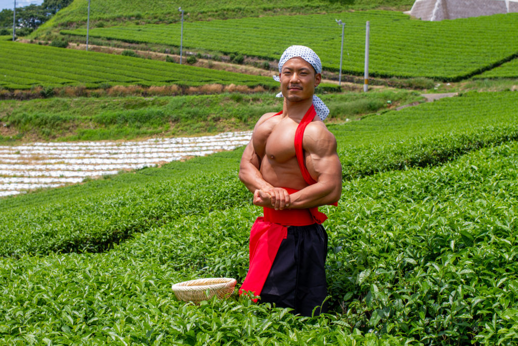 茶畑でサイドチェスト@著作権フリー画像 筋肉
