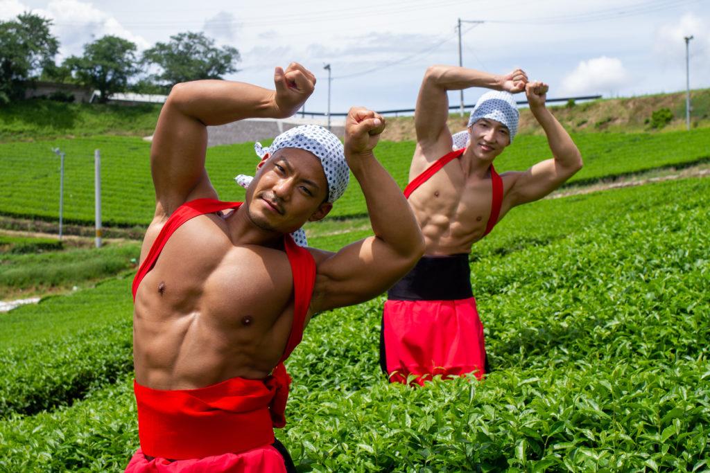 茶畑の精霊マッチョ/reference photo muscle maccha@フリー素材 筋肉