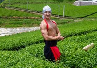 茶畑でサイドチェスト@フリー素材 筋肉
