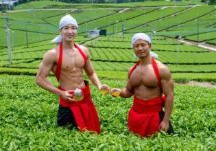 茶畑のマッチョ@フリー素材 筋肉