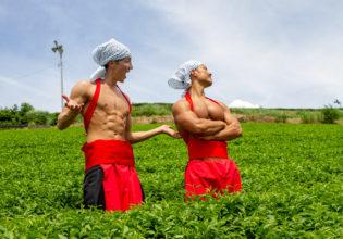 茶葉の方向性で言い争うマッチョ/reference photo muscle maccha@フリー素材 筋肉