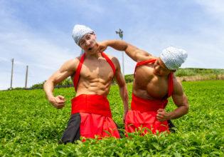 茶葉の覇権争いをするマッチョ@フリー素材 筋肉