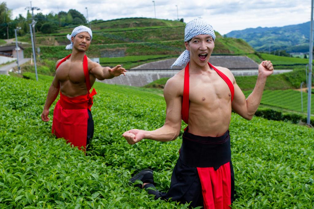茶畑でマッチョをつかまえて/reference photo muscle maccha@フリー素材 筋肉