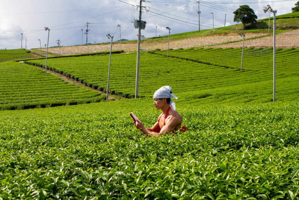 茶畑で読書のマッチョ@フリー素材 筋肉