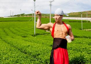 茶畑に抹茶プロテインをまぶすマッチョ@フリー素材 筋肉