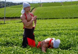 茶畑で手刀で「トンッ」てしたマッチョ/reference photo muscle maccha@著作権フリー画像 筋肉