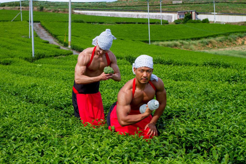 茶畑で筋トレするマッチョ@フリー素材 筋肉