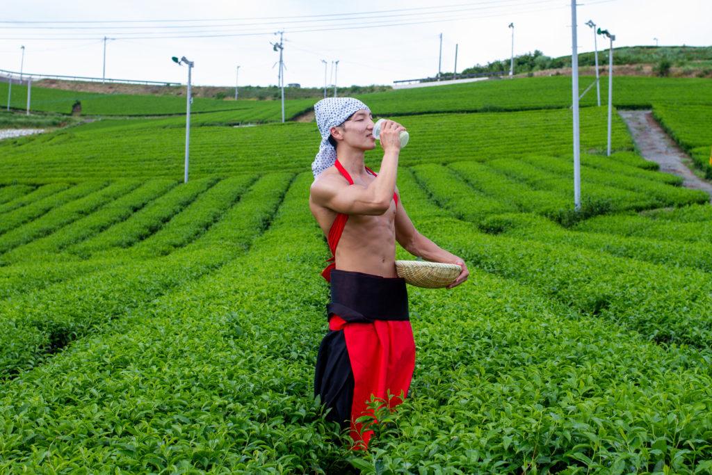 茶畑で抹茶プロテインを飲むマッチョ@フリー素材 筋肉
